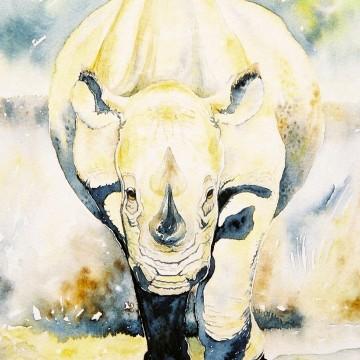 Rampaging rhino