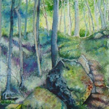 Padley Gorge (cropped) (c) 2016 Duncan Friend